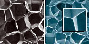 Разница ячеистой структуры сшитого полиэтилена (XLPE) и Evazote